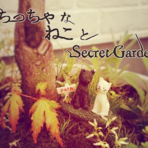ちっちゃなねことSecret Garden <おそとエクステリア>