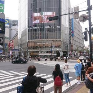 渋谷TSUTAYA、日向坂46・1stアルバム発売記念展示レポ(9/22)