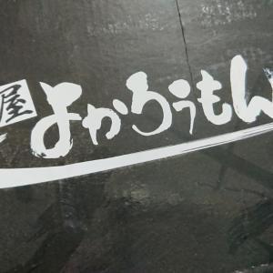 我が家のニューアイテムo(*⌒―⌒*)o