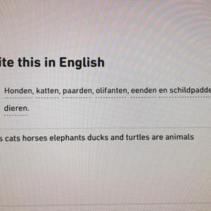 オランダ語学習 否定文
