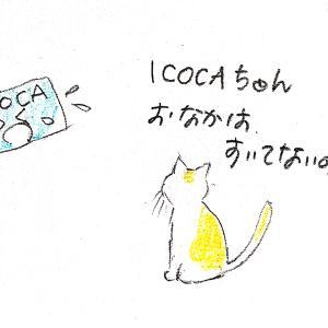 むずかる ICOCA