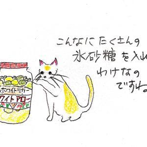 梅シロップ