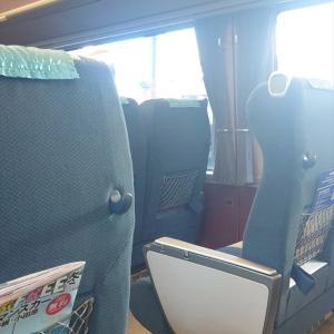 豊川稲荷2021初詣|今年は電車で行ってみた。