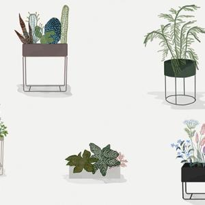 Plant Box Guide