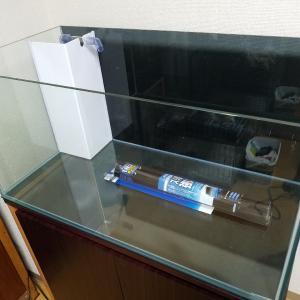 オーバーフロー水槽導入記録【設置編】
