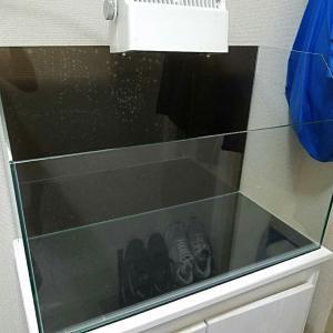 テラリウム水槽 タートルテラリウム600
