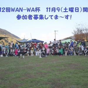第12回WAN-WA杯!参加者募集してま~す!☆
