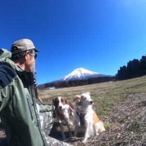 2.23は富士山の日!☆