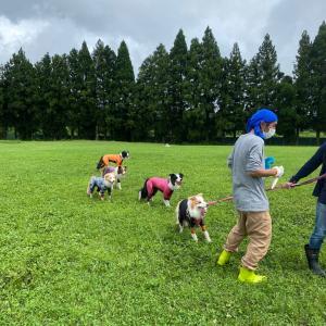 SUP遊びの翌日は朝霧FDG奇跡的に雨があがったよ!!(^^)!☆