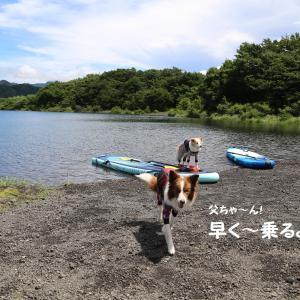 キャンプ帰りお天気回復~本栖湖SUP行こう♬\(^^)/☆