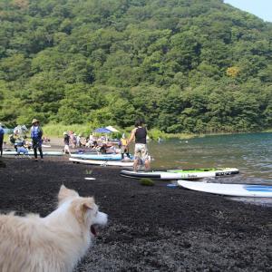 連日の本栖湖SUP遊びは賑やかでした!☆