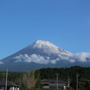 富士山雪化粧!寒いけど本栖湖SUP!(╹◡╹)☆