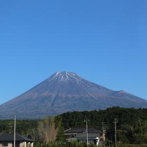 富士山が綺麗だったから水ヶ塚公園に寄ってみたよ!☆