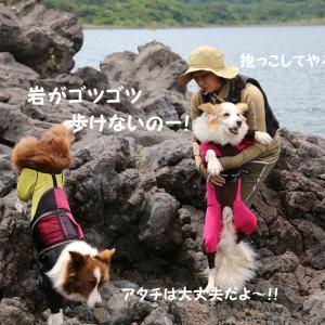 本栖湖SUP~富士山と夫婦岩(^_^)☆