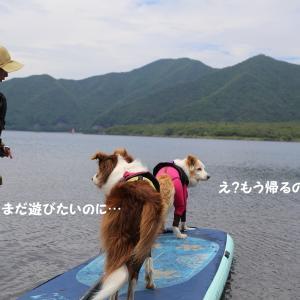 本栖湖SUPクルージング楽しかったね!(^∇^)☆