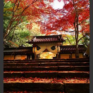 寺の秋景 3
