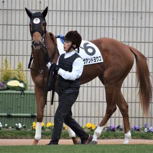 既走馬相手にデビューしたラヴアンドヨウコ、最速上がりをマーク