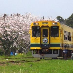 桜咲く 風そよぐ谷 国吉駅 (いすみ鉄道) 千葉県いすみ市 2021年3月30日