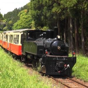 新緑の季節 小湊鉄道 (2021年4月24日) 千葉県市原市