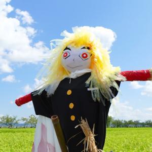 田んぼの学校「かかしの人気投票」 ひらおかの里農村公園 (千葉県袖ケ浦市) 2021年7月29日