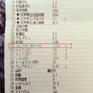 血液検査の結果表(今更感)