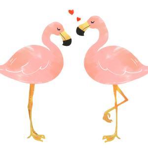 愛はシンプル!自分が好きなら愛を貫こう。