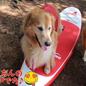 本栖湖SUP☆第①弾☆彡