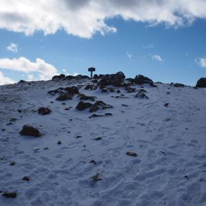 寡雪の入笠山