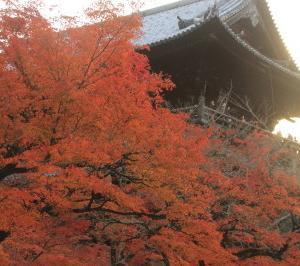 京都・紅葉-1