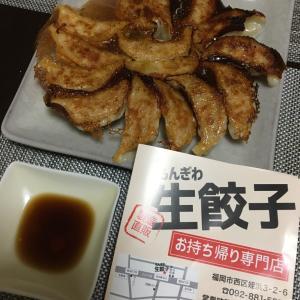 糸島食材で餃子♪【姪浜:もんぎわ生餃子】