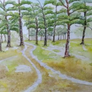 惣慶宮の琉球松林