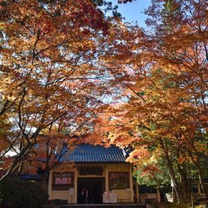 紅葉の高野山を散歩