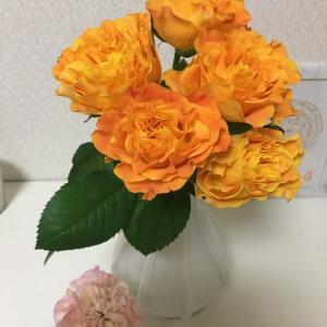 橙色のパワー~色からのメッセージ