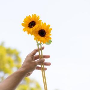 白鵬さんと稲盛和夫さんが「心技体」を語る ~『致知』2012年10月号より~