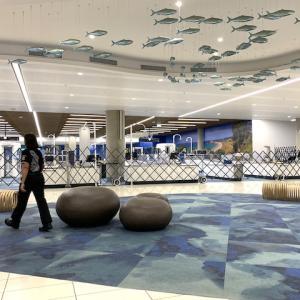 オークランド国際空港に人がいない!コロナウィルスの影響すごい!