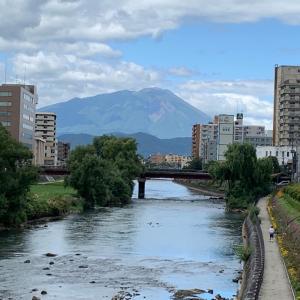 日本で暮らして、もうすぐ8か月