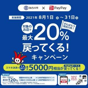 PayPay×加古川20%還元始まりました!