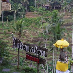 『バリ島旅行記2019vol.3』~alonalonでカレーランチ♪