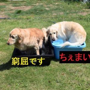 水遊び~♪