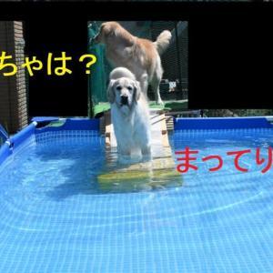 プールです♪