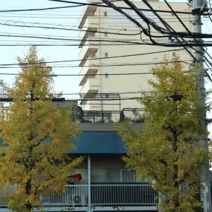 江東区M様邸設備その他工事現場打合せに。