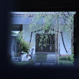 足立区江北の「性翁寺」歴史を感じるさせる山門を目で楽しむ。