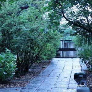 年月を重ねた木造建築のお寺に興味ありますか?