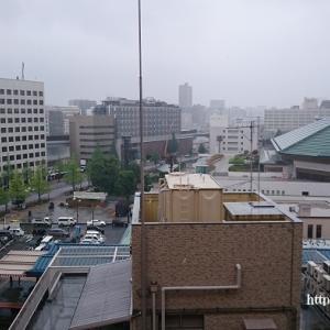 墨田区S様邸内装リフォーム工事現場確認調査。