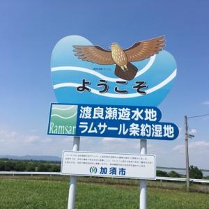 渡良瀬遊水地を空撮