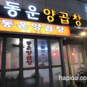釜山で絶品ホルモンとカルビ!東雲ホルモン(トンウン ヤンコプチャン)