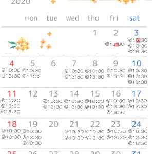 10月のレッスンスケジュールと今月のトイプードルブラン