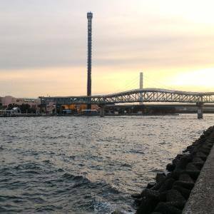 メバル調査at平潟湾2