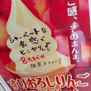 7/17りんごソフト現れる(^(エ)^)