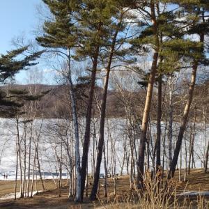 3/24春は遠いかな、岩洞湖周辺